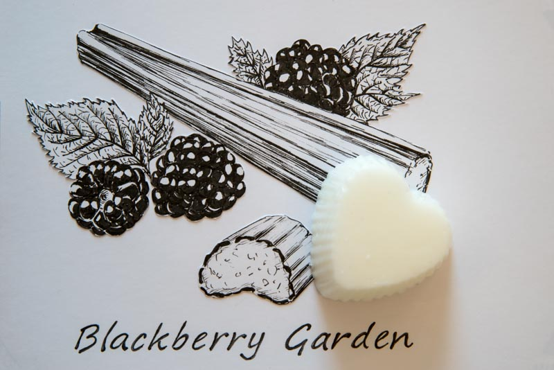 Blackberry Garden